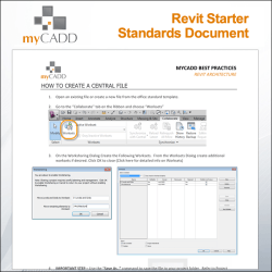Revit Standards Document